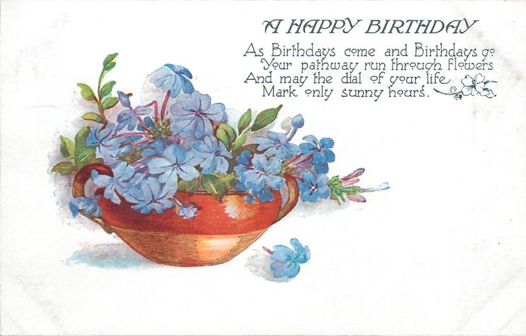 A HAPPY BIRTHDAY  blue flowers