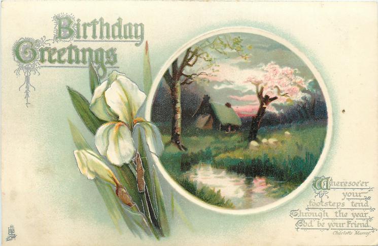 BIRTHDAY GREETINGS  iris