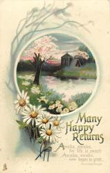 MANY HAPPY RETURNS  daisies