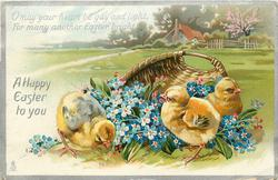 A HAPPY EASTER TO YOU with verse, three chicks next to a basket of forget-me-nots