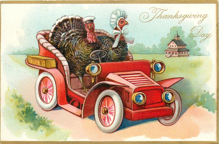 two turkeys ride in automobile, passenger wears bonnet, house to right