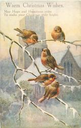 WARM CHRISTMAS WISHES  five robins on branch before snowy church