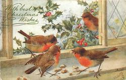 WITH BEST CHRISTMAS WISHES  four robins eating nuts on window sill, one outside