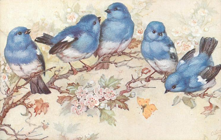 five blue birds on blossom tree, yellow butterfly below