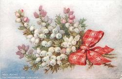 WHITE HEATHER FOR CONTENTMENT AND GOOD LUCK