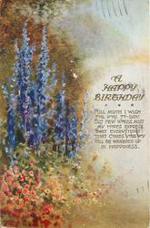 A HAPPY BIRTHDAY with verse, lupins to left in meadow