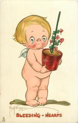 cupid stands crying, holding flowerpot of bleeding hearts