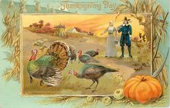 man and woman watch five turkeys, man has gun over shoulder