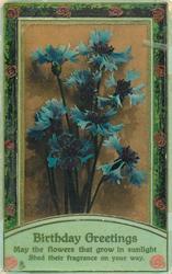 BIRTHDAY GREETINGS  blue cornflowers