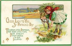 GOOD LUCK TO YOU ST. PATRICK'S DAY  THE GREEN LITTLE SHAMROCK, THAT DEAR LITTLE PLANT, DEAR EMBLEM THAT GROWS IN OUR ISLAND  girl bends front to shamrock, rural inset behind