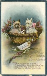 BIRTHDAY GREETINGS TO MY NEPHEW   two scottie puppies in basket  WITH ALL GOOD WISHES on label