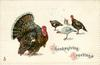 THANKSGIVING GREETINGS  tom turkey left, two hens & tom distant right