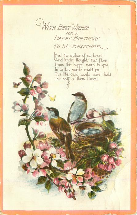WITH BEST WISHES FOR A HAPPY BIRTHDAY TO MY BROTHER two birds & nest with eggs, blossom