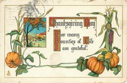 THANKSGIVING DAY  FOR MANY BOUNTIES OF LIFE I AM GREATFUL