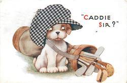 """""""CADDIE SIR?"""""""