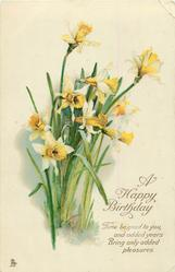 A HAPPY BIRTHDAY  daffodils