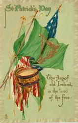 THE FLAG OF OLD IRELAND IN THE LAND OF THE FREE