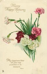MANY HAPPY RETURNS  carnations