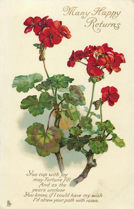 Many Happy Returns Red Geraniums Tuckdb Postcards