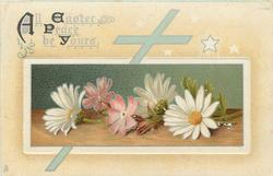ALL EASTER PEACE BE YOURS  white daisies yellow middles and two purple flowers