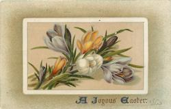 A JOYOUS EASTER  crocus in oblong inset