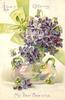 LOVE'S OFFERING, MY DEAR VALENTINE  violets in glass vase, green ribbon