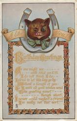 BIRTHDAY GREETINGS, I LIKE YOU!  winking cat