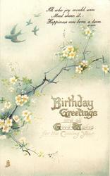BIRTHDAY GREETINGS AND ALL GOOD WISHES FOR THE COMING YEAR