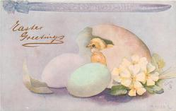 primroses right, chick in egg-shell faces left