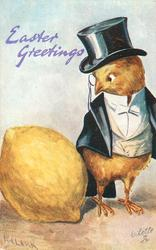 EASTER GREETINGS  chick in formal evening dress & top hat looks down at large lemon