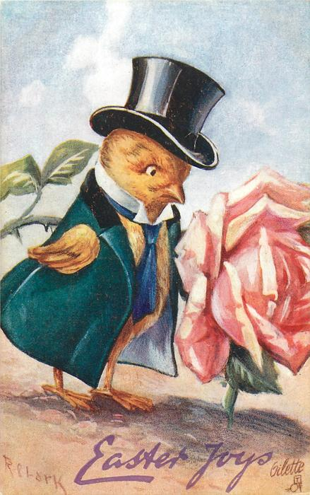EASTER JOYS  chick in top hat, formal coat & tie looks at large rose