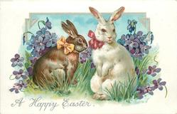 A HAPPY EASTER  two rabbits, violets behind