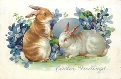 EASTER GREETINGS  two rabbits, violets, violet Easter egg behind