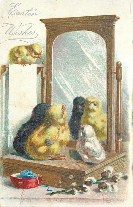 EASTER WISHES  chicks look in mirror, another observes from above left, pussy willow front right