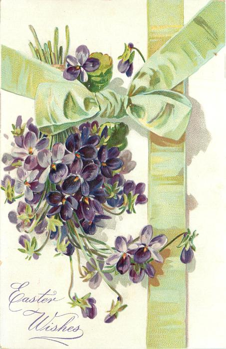 EASTER WISHES  violets left, green bow above, green ribbon right