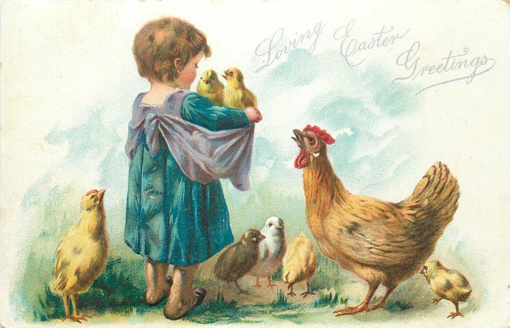 LOVING EASTER GREETINGS  child faces away with  two chicks in apron, hen looks up, chicks around