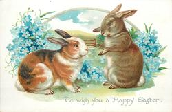 TO WISH YOU A HAPPY EASTER  two rabbits in front of forget-me-nots