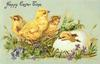 HAPPY EASTER TIME  two chicks left & chick still in egg right