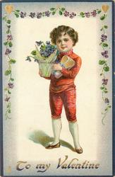 TO MY VALENTINE  boy in red holds pot of violets & a present