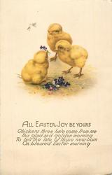 ALL EASTER JOY BE YOURS  three chicks