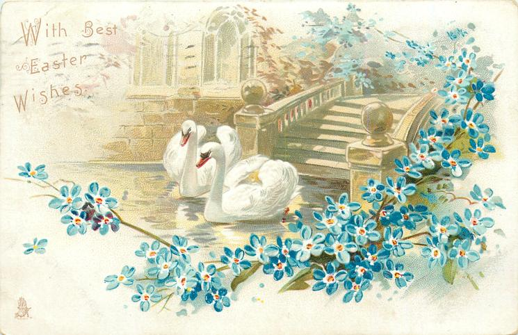 WITH BEST EASTER WISHES  two swans on water, steps behind, blue forget-me-nots around