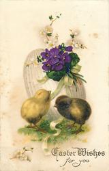 EASTER WISHES FOR YOU  two chicks, violets