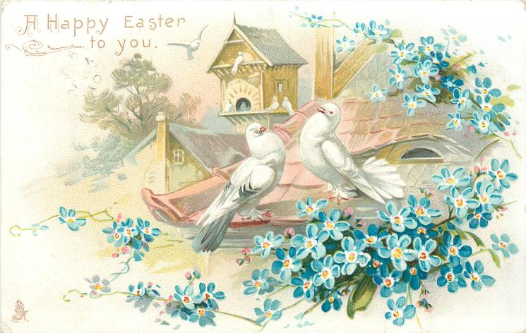 A HAPPY EASTER TO YOU  two white pigeons on roof, blue forget-me-nots