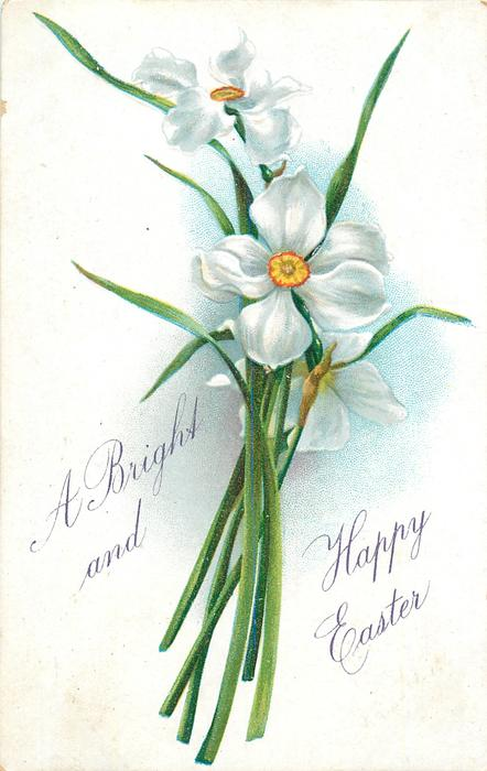 A BRIGHT AND HAPPY EASTER  narcissi, three white blooms with red/yellow centres, stalks at bottom center