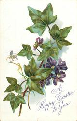 A HAPPY EASTER TO YOU  violets & ivy leaves, four purple flowers, one bud, one leaf & stalk at bottom