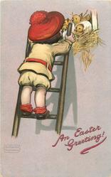 AN EASTER GREETING!  boy on ladder looking at chicks