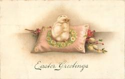 EASTER GREETINGS  chick on cushion over pussy willow