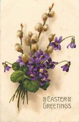 EASTER GREETINGS  violets & pussy-willow
