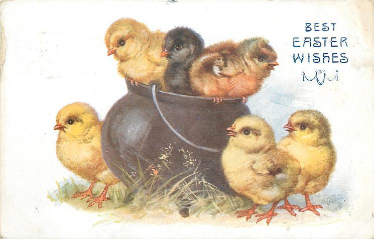 BEST EASTER WISHES  six chicks, three on rim of pot, three around