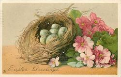 EASTER GREETINGS  six eggs in birds nest, many pink polyanthus right